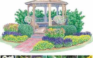 Как красиво посадить цветы на клумбе схема