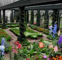 Зимний сад полы