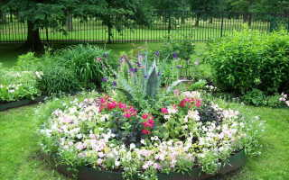 Как красиво посадить цветы у дома