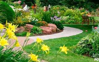 Как красиво рассадить цветы на участке